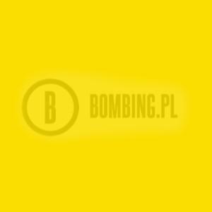 94 R1021 Light Yellow
