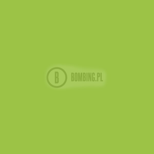 94 RV 273 Verde Iguana