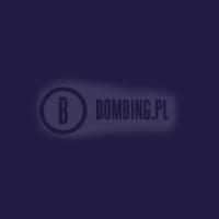 94 RV 28 Cosmos Violet