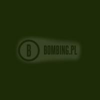 94 RV133 Dharma Green