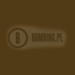 94 RV140 Mole Brown