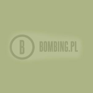 94 RV179 Bonsai Green