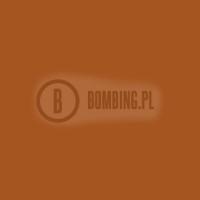 LP-317 Dortmund