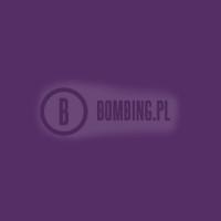 MEGA R-V216 Anonumous Violet