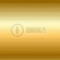 Premium 220-1 gold dollar