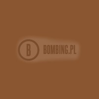 S754 SIGNAL BROWN 8002