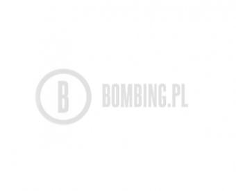 WB R-9010 Titanium White