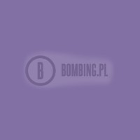 WB RV-173 Dioxazine Purple 200ml