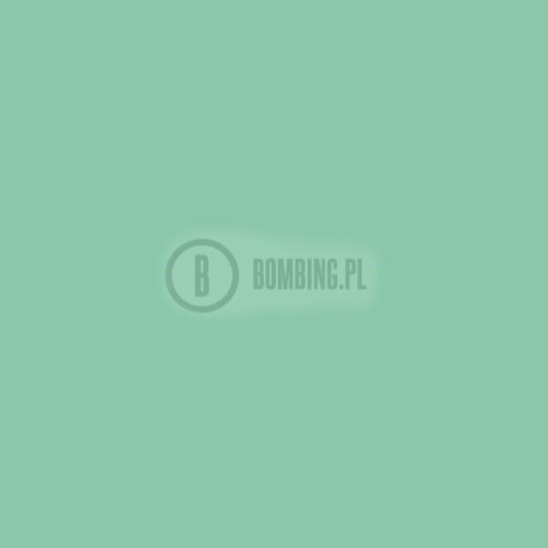WB RV-219 Turquoise Green 200ml