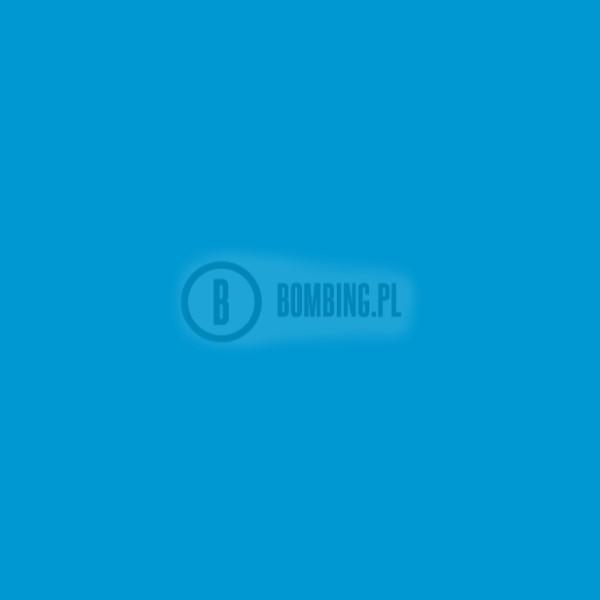 WB RV-29 Phthalo Blue Ligh 200ml