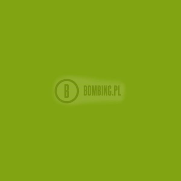 WB RV-34 Brilliant Light Green 200ml